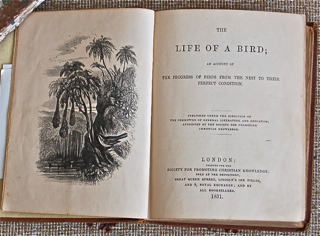 The Life of a Bird; an Account of the Progress of Birds from the Nest to their Perfect Condition