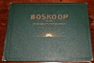 Boskoop in Its Historical Development as a Centr...